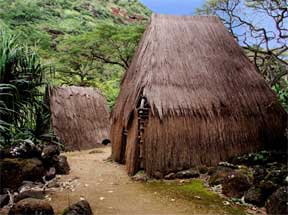 Architectural Color Matters