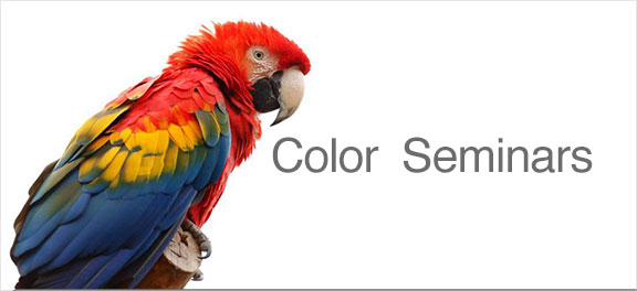 color seminars parrot