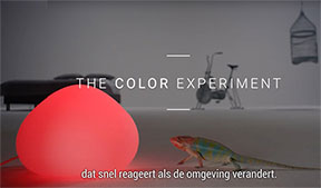 the color experiment